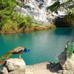 Индивидуальные туры по Абхазии